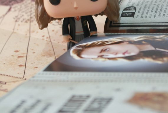 Essential Books: Hermione Granger